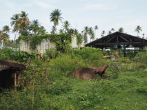 Edificios del abandono en las zonas tropicales Foto de archivo libre de regalías