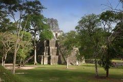 Edificios en Tikal, Guatemala del maya Fotografía de archivo