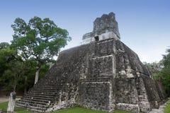 Edificios en Tikal, Guatemala del maya Fotografía de archivo libre de regalías