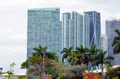Edificios modernos en Miami, la Florida fotos de archivo