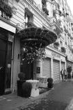 Edificios parisienses de los elementos arquitectónicos Foto de archivo