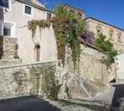 Edificios viejos por completo de la hiedra y de las flores, Caceres, España Imagenes de archivo