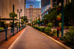 Edificios y el ajardinar a lo largo de una calle en Orlando, la Florida Imágenes de archivo libres de regalías