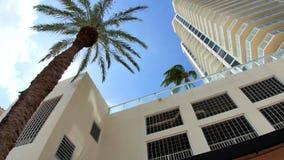 Edificios y palmeras de Miami Beach almacen de metraje de vídeo
