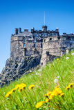 Edinburgh Castle with spring meadow in Scotland Royalty Free Stock Photos