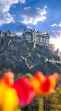 Edinburgh Castle with spring tulips in Scotland Royalty Free Stock Images