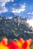 Edinburgh Castle with spring tulips in Scotland Royalty Free Stock Image
