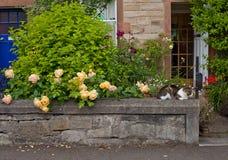 Edinburgh garden Stock Photo