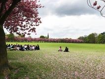 Meadows students Edinburgh Stock Photos