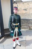 Soldier on Parade royalty free stock photography
