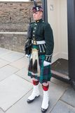 Soldier on Parade royalty free stock images