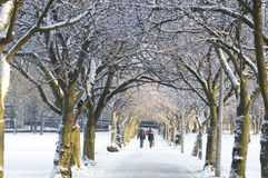 edinburgh snow arkivbilder