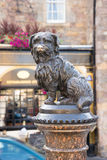 EDINBURGH, standbeeld van Greyfriars Bobby Stock Afbeelding