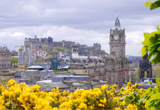 Edinburgh. A view of Edinburgh City including the castle and yellow gorse in the front royalty free stock photography