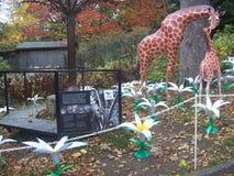 Edinburgh-Zoo, Baumkunstinstallation wünschend stockbild