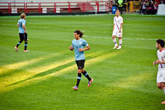 Edinson Cavani - Uruguay Stock Photography