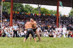 EDIRNE, TURKEY - JULY 26, 2010: Wrestlers Turkish pehlivan and Japanese sumo wrestler at the competition in Kirkpinar. Kirkpinar i Royalty Free Stock Image