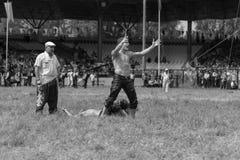 EDIRNE, TURQUÍA - 26 DE JULIO DE 2010: Pehlivan turco de los luchadores en la competencia en Kirkpinar tradicional que lucha Kirk Imagen de archivo
