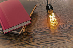 Edison Lightbulb Books Arkivfoto