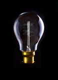Edison Lightbulb Stock Images