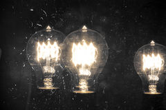 Edison Lightbulb Royalty Free Stock Image