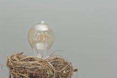 Edison Lightbulb Royalty Free Stock Images
