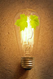 Edison Lightbulb Tree Stock Photo