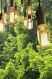 Edison Lightbulbs Royaltyfri Bild