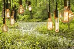 Edison Lightbulbs Στοκ εικόνες με δικαίωμα ελεύθερης χρήσης