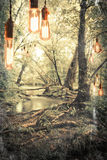 Edison Lightbulbs Stock Photography