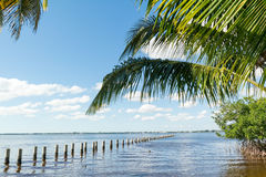 Edison Pier in Caloosahatchee River, Fort Myers, Florida, USA. Edison Pier in Caloosahatchee River and palm trees in Fort Myers, Florida, USA Stock Images
