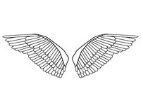 Editable bird wings vector Royalty Free Stock Photo