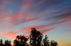 editable eps jpg πλήρως δέντρα ηλιοβασιλέματος Στοκ Εικόνες