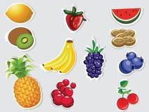 Editable Früchte auf grauem Hintergrund Lizenzfreie Stockfotografie