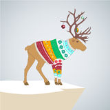 Editable vector illustration. caribou in colored. Vector illustration. caribou in colored striped sweater with Christmas toys on the horns Royalty Free Stock Photos