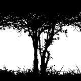 Bush detail silhouette. Editable vector silhouette detail of the trunk of a bush and undergrowth with copy-space Royalty Free Stock Images