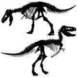 T rex skeleton. Editable vector silhouettes of the skeleton of a Tyrannosaurus rex dinosaur Stock Image