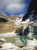 Edith Cavell jezioro i lodowiec Obraz Stock