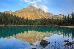 Edith Cavell Lake Royalty-vrije Stock Afbeeldingen