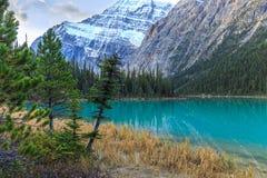 Edith Cavell Lake Stock Image