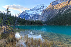 Edith Cavell Lake. In Alberta, Canada royalty free stock photos