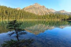 Edith Cavell Lake Stock Photos