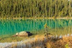 Edith Cavell Lake Royalty Free Stock Photos