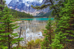Edith Cavell Lake Royalty Free Stock Images