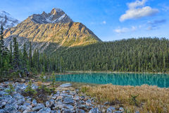 Edith Cavell Lake. Jasper National Park, Alberta, Canada stock photo
