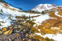 Edith Creek, Mt rainier Photo stock