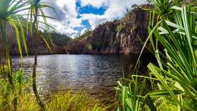 Edith Falls - Noordelijk Grondgebied - Australië royalty-vrije stock fotografie