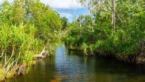 Edith Falls - Noordelijk Grondgebied - Australië stock fotografie