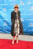 Editor-in-chief of American Vogue Anna Wintour at the red carpet before US Open 2013 opening night ceremony Stock Image
