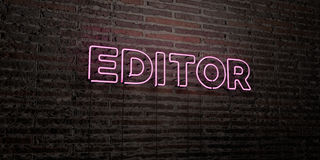 EDITOR -Realistic Neon Sign on Brick Wall background - 3D rendered royalty free stock image Stock Photos